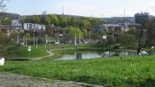Frühlingserwachen im Schlossgarten Stuttgart